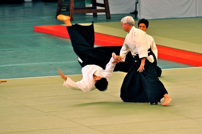 Toshio Suzuki Aikido
